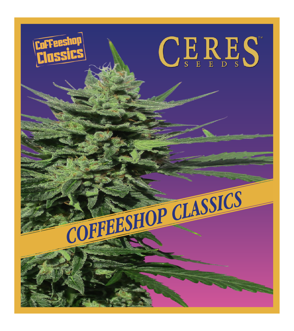 Auto-Lemonesia - Auto-Flowering Cannabis Seeds - Ceres Seeds Amsterdam