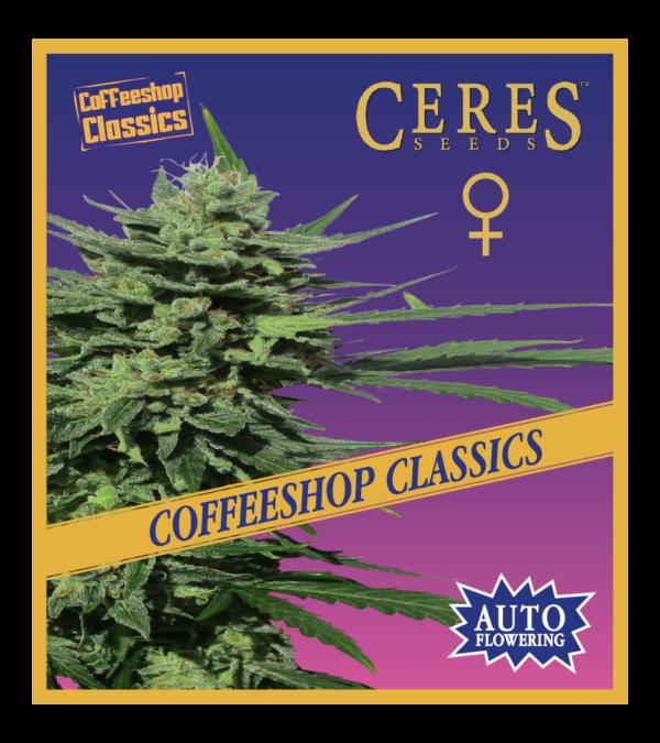 Auto-Lemonesia Cannabis Seeds - Ceres Seeds Amsterdam