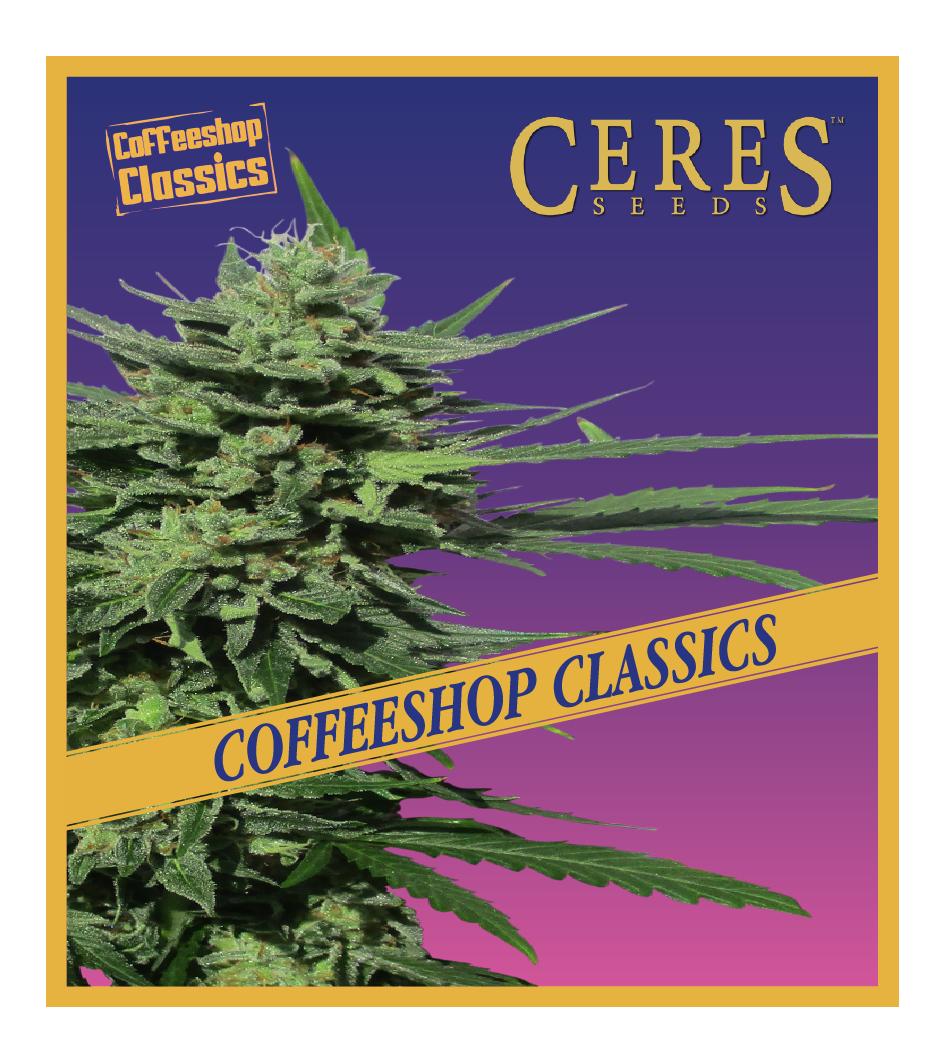 Auto Lemonesia - Auto-Flowering Cannabis Seeds - Ceres Seeds Amsterdam