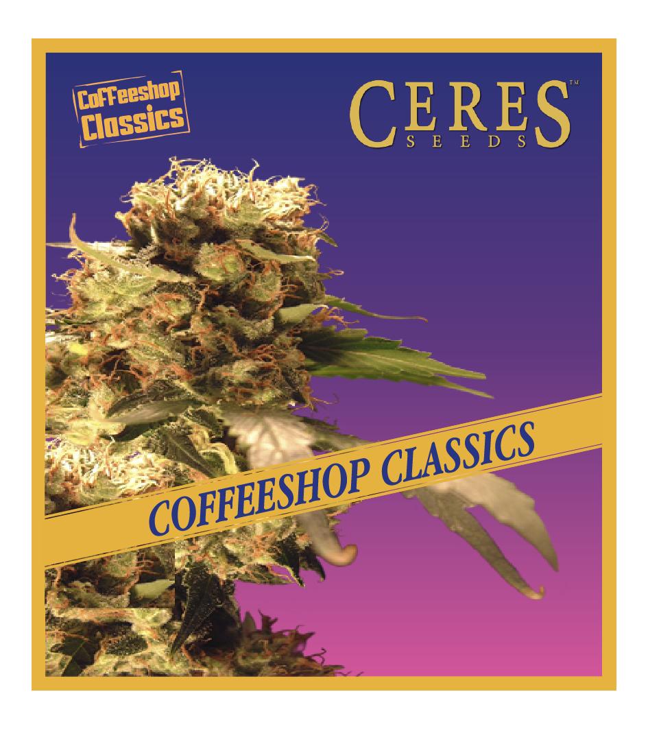 Orange Bud - Feminized Cannabis Seeds - Coffeeshop Classics - Ceres Seeds Amsterdam