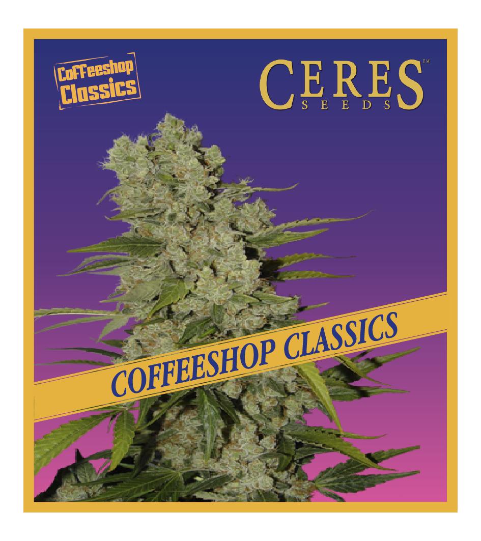 White Widow - Cannabis Seeds - Coffeeshop Classics - Ceres Seeds Amsterdam