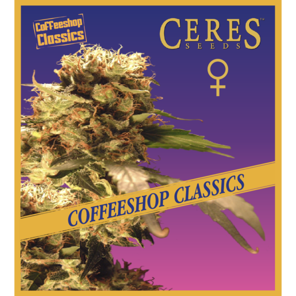Ceres Kush- feminized seeds, Ceres Skunk - feminized seeds, Fruity Thai - feminized seeds, Lemonesia - feminized seeds, White Indica - feminized seeds, Auto-flowering seeds mix, Auto-lemonesia, Easy rider,
