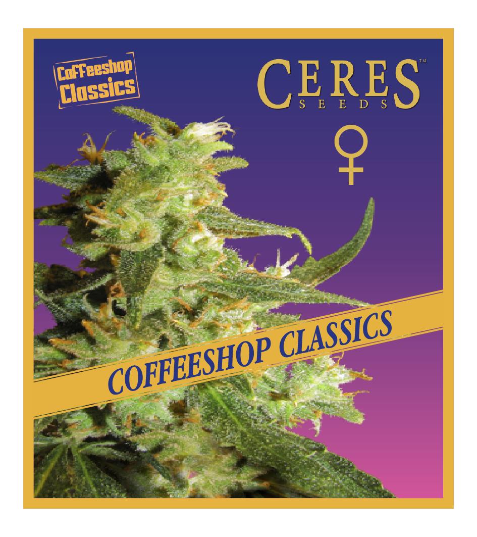 Skunk Haze -Feminized Cannabis Seeds