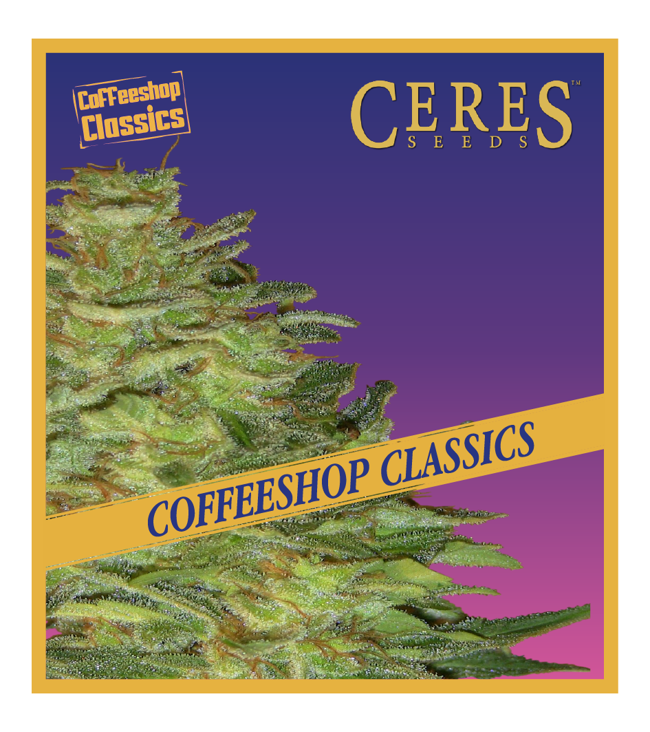Super Automatic Skunk - Auto-Flowering Cannabis Seeds - Ceres Seeds Amsterdam