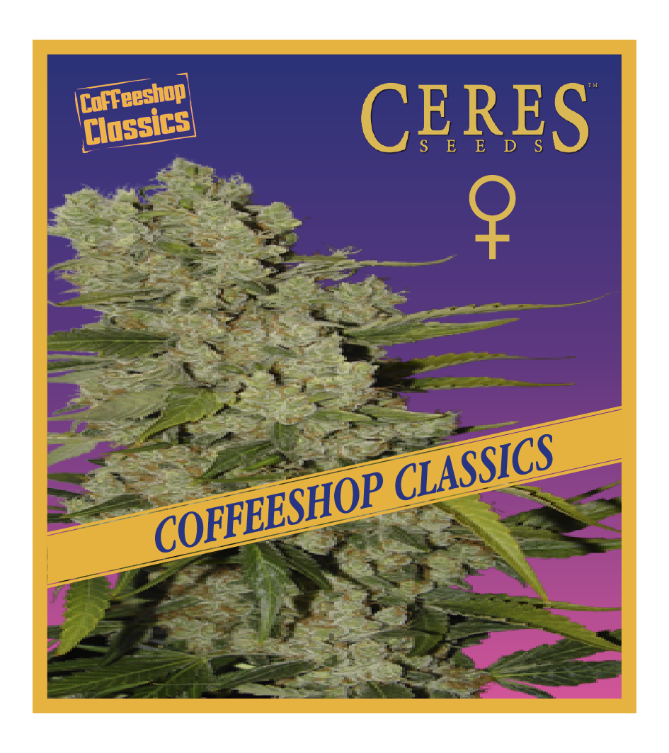 Ceres Kush - Regular seeds, Ceres Skunk - Regular seeds, Fruity Thai - Regular seeds, Lemonesia - Regular seeds, White Indica - Regular seeds,