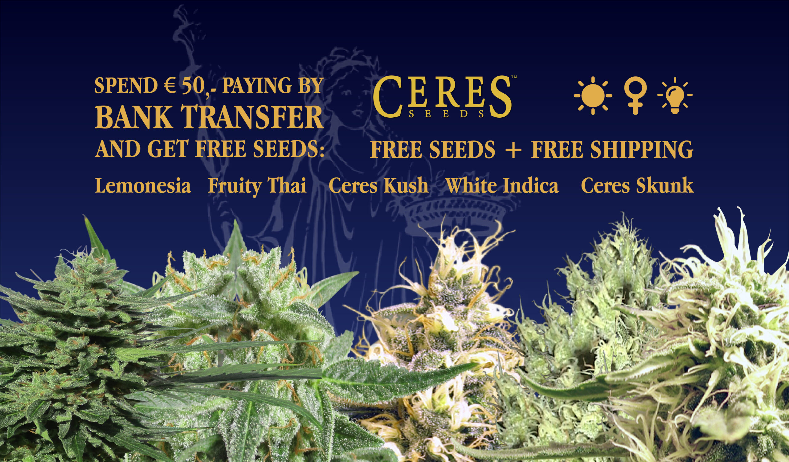 Ceres Seeds Amsterdam - Free seeds and shipping by spending 50 euro!