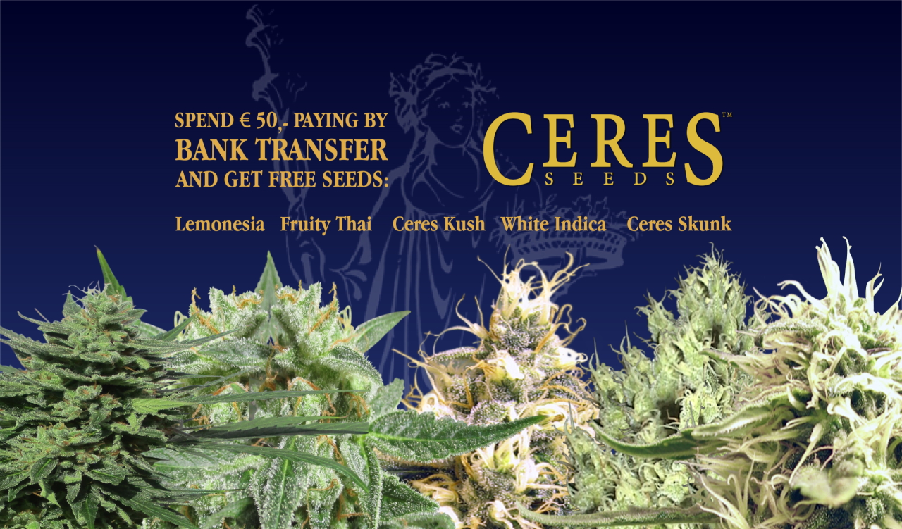 Ceres Seeds Amsterdam
